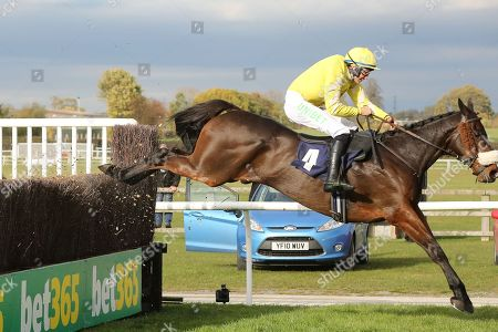 FINGERONTHESWITCH ridden by A P Heskin and trained by Neil Mulholland jumps the last fence and wins The Enjoy The Jumps On Racinguk Handicap Steeple Chase over 3m (£9,000)   during the Bet365 Meeting at Wetherby Racecourse, Wetherby. Picture by Mick Atkins