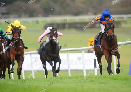 Naas ANTILLES & Michael Hussey win the McAuley Plate Nursery from COLFER ME & Shane Crosse (left).