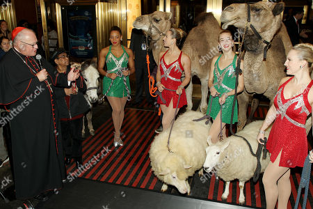 Editorial photo of His Eminence Timothy Cardinal Dolan & The Radio City Rockettes Blesses the Animals from the Christmas Spectacular's 'Living Nativity' Scene, New York, USA - 05 Nov 2018