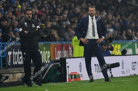 Fulham manager Slavisa Jokanovic (right)