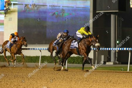 Editorial photo of Horse Racing, Meydan Racecourse, Dubai, United Arab Emirates - 08 Nov 2018