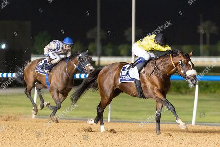 ROY ORBISON under Fernando Jara wins the 8f Longines La Grande Classic Collection Maiden race Meydan, Dubai, UAE.