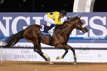 Stock Picture of ROY ORBISON under Fernando Jara wins the 8f Longines La Grande Classic Collection Maiden race Meydan, Dubai, UAE.