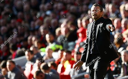 Stock Picture of Fulham manager Slavisa Jokanovic gestures on the touchline