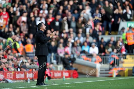 Stock Image of Fulham manager Slavisa Jokanovic