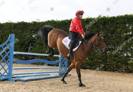 Stock Picture of Jockey Ap McCoy And Legends Richard Dunwoody Peter Scudamore And John Francome Prepare For Olympia And Demonstrate Their Showjumping Abilities.