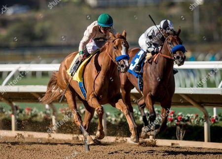 Horse Racing - 12 Nov 2018