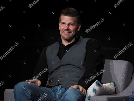 David Boreanaz participates on a panel during Veterans Day: Television and the Military Experience, a special Television Academy member event, on at the Saban Media Center in North Hollywood, Calif