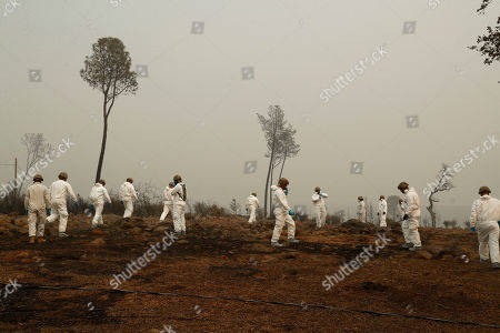 Members of the California Army National Guard search a property for human remains at the Camp fire, in Paradise, Calif