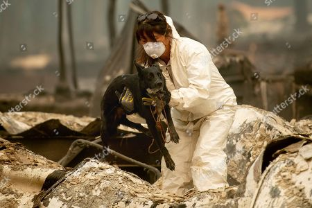 A search and rescue worker, looking for Camp Fire victims, carries Susie Q. to safety after the cadaver dog fell through rubble at the Holly Hills Mobile Estates, in Paradise, Calif