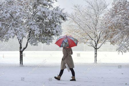Winter Storm Avery