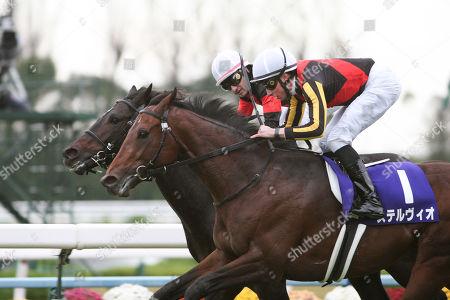 (R-L) Stelvio ( William Buick), Persian Knight ( Mirco Demuro) - Horse Racing : Stelvio ridden by William Buick wins the Mile Championship