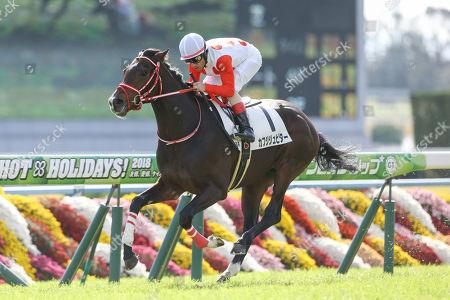 Kafuji Jupiter ( Mirco Demuro) - Horse Racing : Kafuji Jupiter ridden by Mirco Demuro wins the Kyoto 5R Make Debut Kyoto
