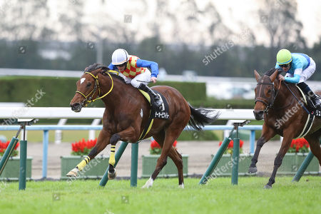 (L-R) T O Victory ( Ryan Moore), Lune Rouge ( Mirco Demuro) - Horse Racing : T O Victory ridden by Ryan Moore wins the Kyoto 10R Kinugasa Tokubetsu