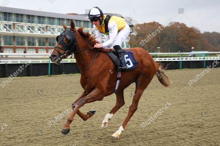 Horse Racing - 20 Nov 2018