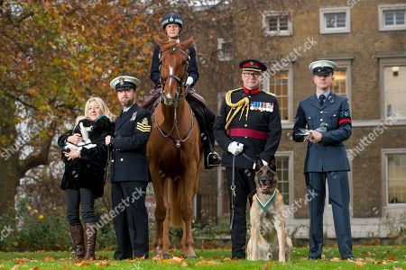 Stock Photo of PDSA Dickin Medal 75th Anniversary event at Imperial War Museum London l-r Gremlin the cat (representing recipient Simon the cat) with owner Anna Webb and petty officer Jeremy Blackburn; metropolitan police horse Upstart (representing all the horse recipients) with mounted police officer Amanda Nesbitt; medal recipient Mali the dog (representing all dog medal recipients) with Colonel Neil Smith QHVS; unnamed pigeon with Corporal Robin Taylor.