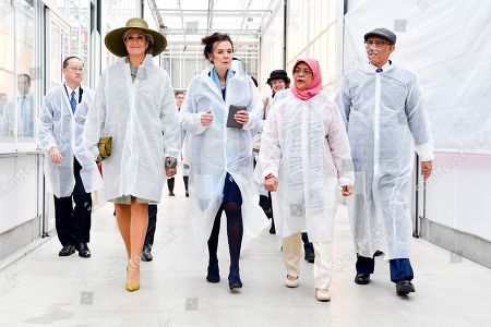 Queen Maxima with The President of Singapore, Halimah Yacob and her husband Mohamed Abdullah Alhabshee during the State visit from Singapore to the Netherlands