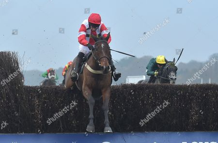 Mr Medic (James Best) takes the last before going on to win The Waitrose & Partners Handicap Steeple Chase.