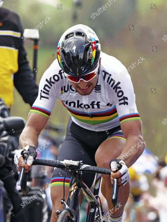 Stock Image of Peter Sagan SLK Tinkoff winner 2016 Tour des Flandres 255kms 2nd Fabien Cancellara (Sui).